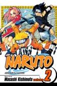 Masashi Kishimoto - Naruto, Vol. 2  artwork