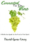 Connected To The Vine A Reflective Guide To The Fruit Of The Spirit