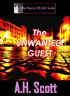 The Poetry Of AH Scott The Unwanted Guest