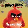 The Angry Birds Movie Seeing Red