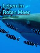 Leben im Roten Meer