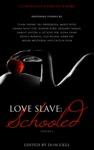 Love Slave Schooled
