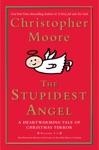 The Stupidest Angel V20