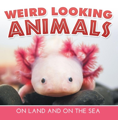 Weird Looking Animals On Land and On The Sea