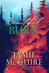 Beautiful Burn A Novel