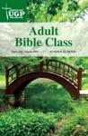 Adult Bible Class