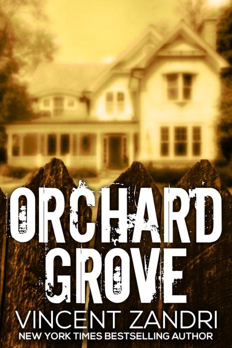Orchard Grove Vincent Zandri Book