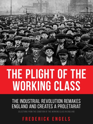 The Plight of the Working Class