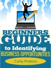 Beginners Guide To Identifying Business Opportunities