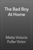 Metta Victoria Fuller Victor - The Bad Boy At Home artwork