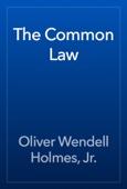 Oliver Wendell Holmes, Jr. - The Common Law artwork