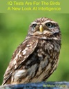 IQ Tests Are For The Birds A New Look At Intelligence