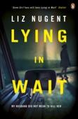 Liz Nugent - Lying in Wait artwork