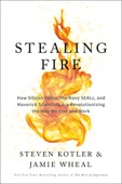 Steven Kotler & Jamie Wheal - Stealing Fire  artwork