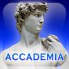 Galería de la Academia. Guía Oficial