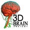 3DBrain