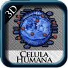 Celula Humana 3D st