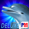 Dolphins Dice Slots Deluxe