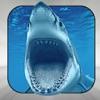 Shark Bible