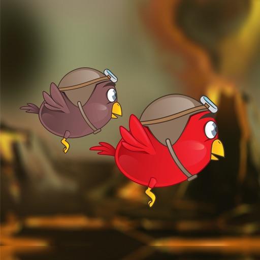 Multiplayer Bird Race iOS App