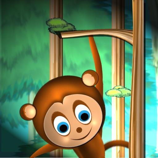 树高任猴爬~~这只可爱的小猴子就很爱