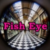Fisheye View Gallery (Free)