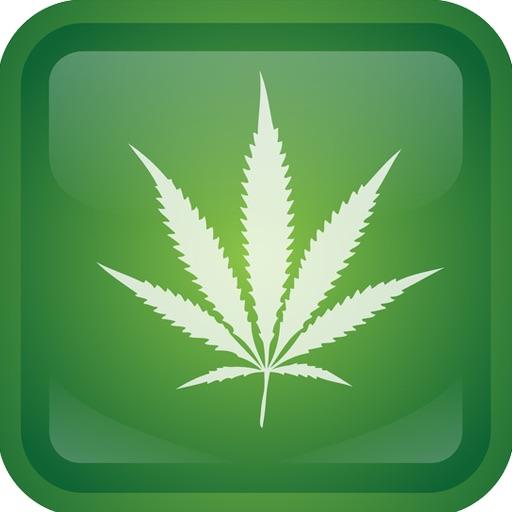 Weed Quiz iOS App