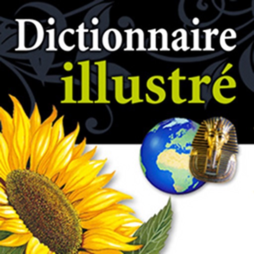 Dictionnaire Hachette illustré