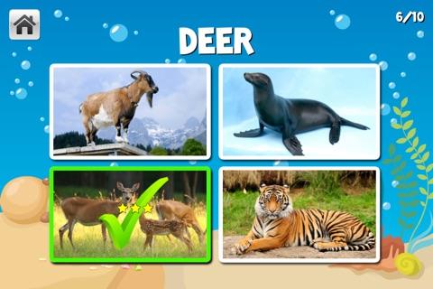 Learn-A-Licious Preschool screenshot 4