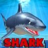 Shark Tank - 3D