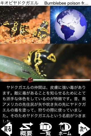 動く!動物図鑑 mini screenshot1