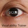 視覚能力開発プログラム