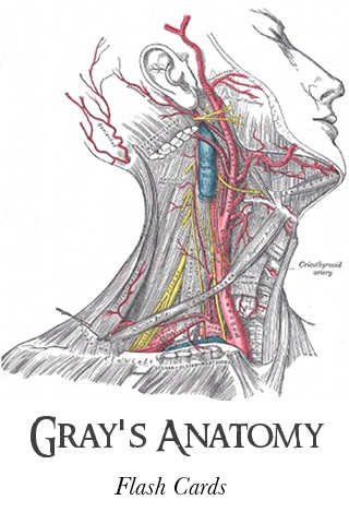 Grays Anatomy Flash Cards 1274 Illustrations By Ubiklabs