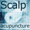 Scalp Acupuncture HD
