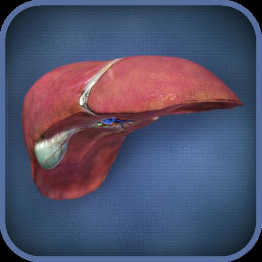 liver-viewer