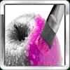 Colorize photo