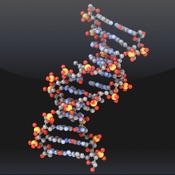 Molecules SS