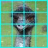 Live Animals 2 - Kids Sliding Square Puzzles