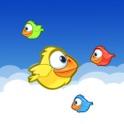 Squishy Bird icon