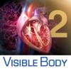 3D Heart & Circulatory Premium 2 (Premium Cardíaco y Circulatorio 3D 2)