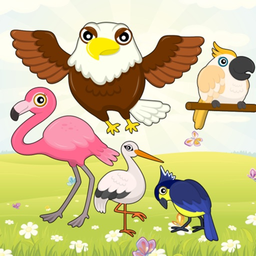 Flying Birds Match Games for Toddlers and Kids : discover the bird species ! iOS App