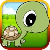 Baby Turtle Flying - Tortoise Fly Racing