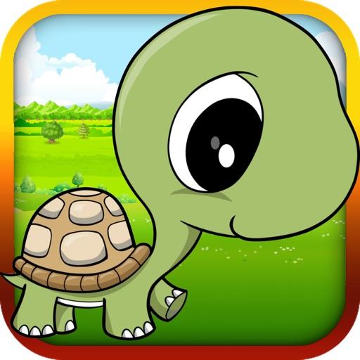 Baby Turtle Flying - Tortoise Fly Racing iOS App