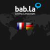 Dictionnaire Allemand Français