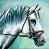 Horse Matching - Puzzle Match Game