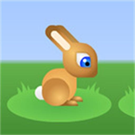 Bunny Hoop iOS App