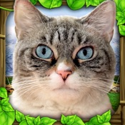 Stray Cat Simulator Hack Resources (Android/iOS) proof