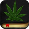 Marijuana Handbook HD - The Ultimate Medical Cannabis Guide With The Best of Edible,  Ganja Strains,  Weed Facts,  Bud Slang and More!