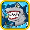 Live Shark Roulette Grand Casino Game Play Video-Art und Pro