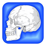 image for Human Body Facts 1000 app